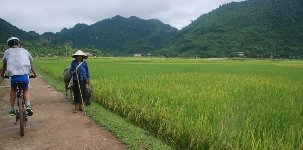 Vietnam NoordZuid Start