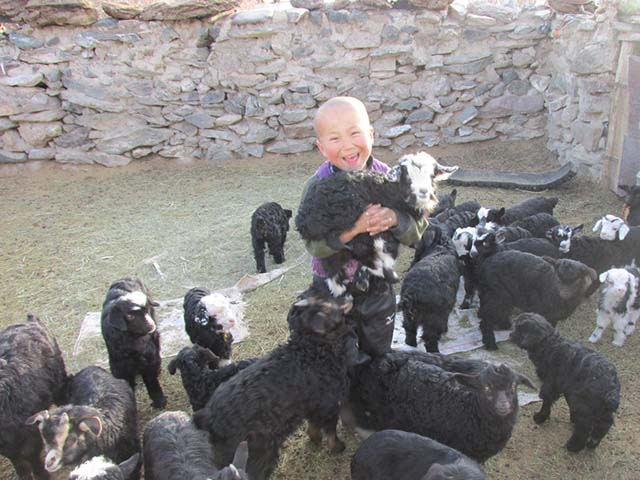 Altay incl jongen met geiten