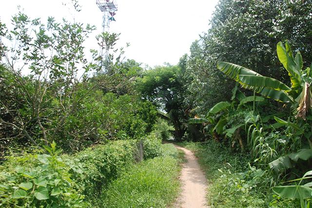 Vietnam Mekong Natuurpad