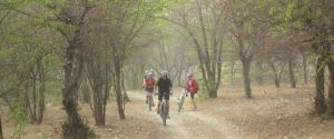 14410811671440673098rural cycle tour jaipur