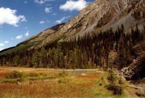 800px-Altai_Kutscherla-Tal