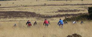 mountainbike-tocht-Hoog-Buurlose-Heide